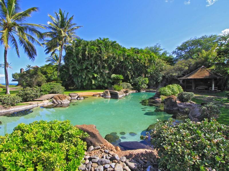 3 5 Acre Maui Paradise 10 500 000 Pricey Pads